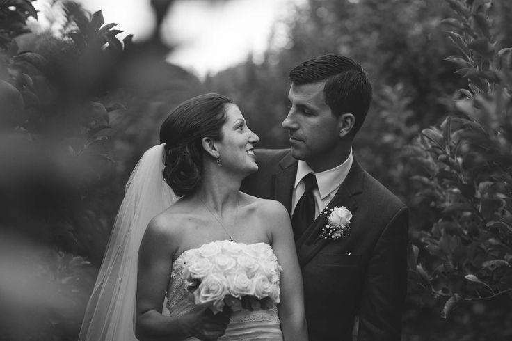 Amy Ellis Photography- Carrigan Farms Wedding, Orchard wedding, bride and groom portraits, farm wedding, charlotte wedding photography, moorseville wedding photography, cardigan farms