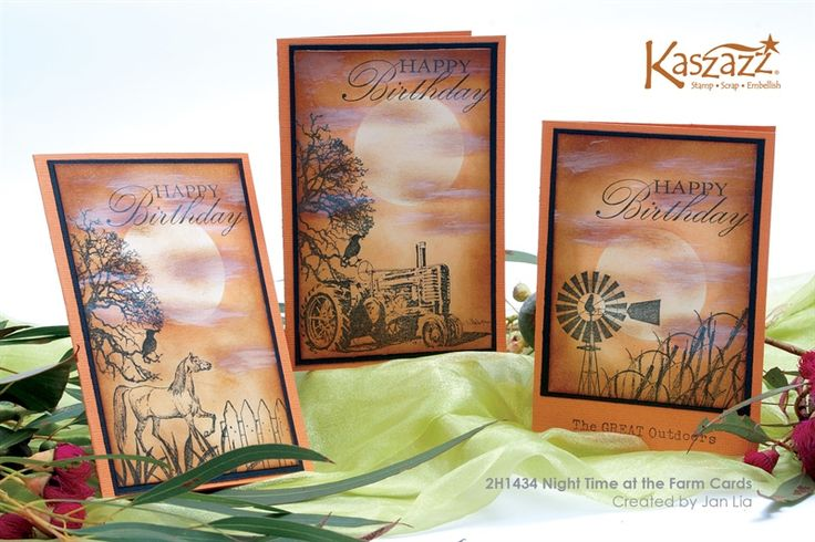 2H1434 Night Time at the Farm Cards