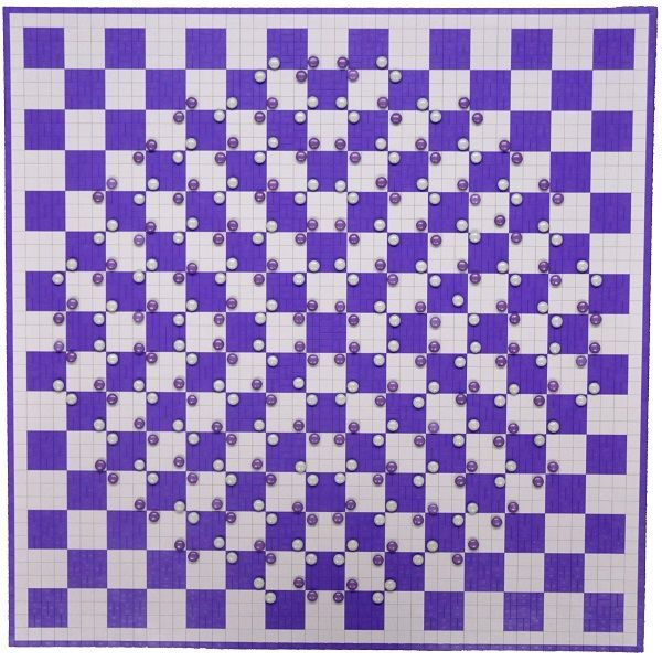 Researchers at Barrow Neurological Institute made a Lego checkerboard and placed white and purple M&Ms on the squares in a way that makes the board appear to bulge.