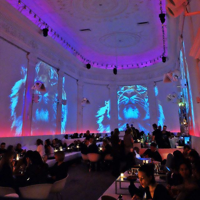 There's never a dull night at Supperclub. After all, wine tastes the same on Wednesday as it does on Saturday. #supperclubams #amsterdam #restaurant #club #bar #odeon #visuals #unusual #night #tiger