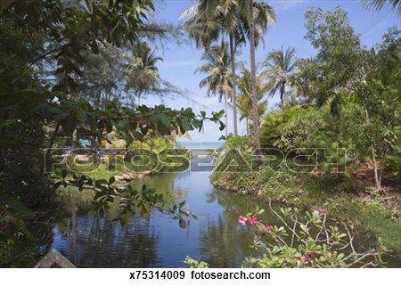 idyllique paysage tropical dans phuket tha lande banque de photographies nature pinterest. Black Bedroom Furniture Sets. Home Design Ideas