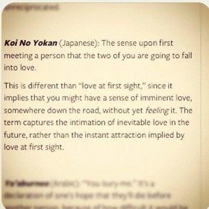 koi no yokan meaning - Google Search