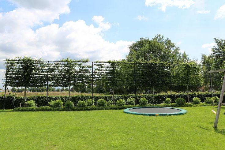 Landelijke tuinen hebben vaak veel ruimte en dus de mogelijkheid om er een trampoline in te plaatsen zonder dat het in de weg staat.