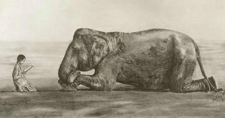 Elephant and boy reading drawing (photo by Gregory Colbert)