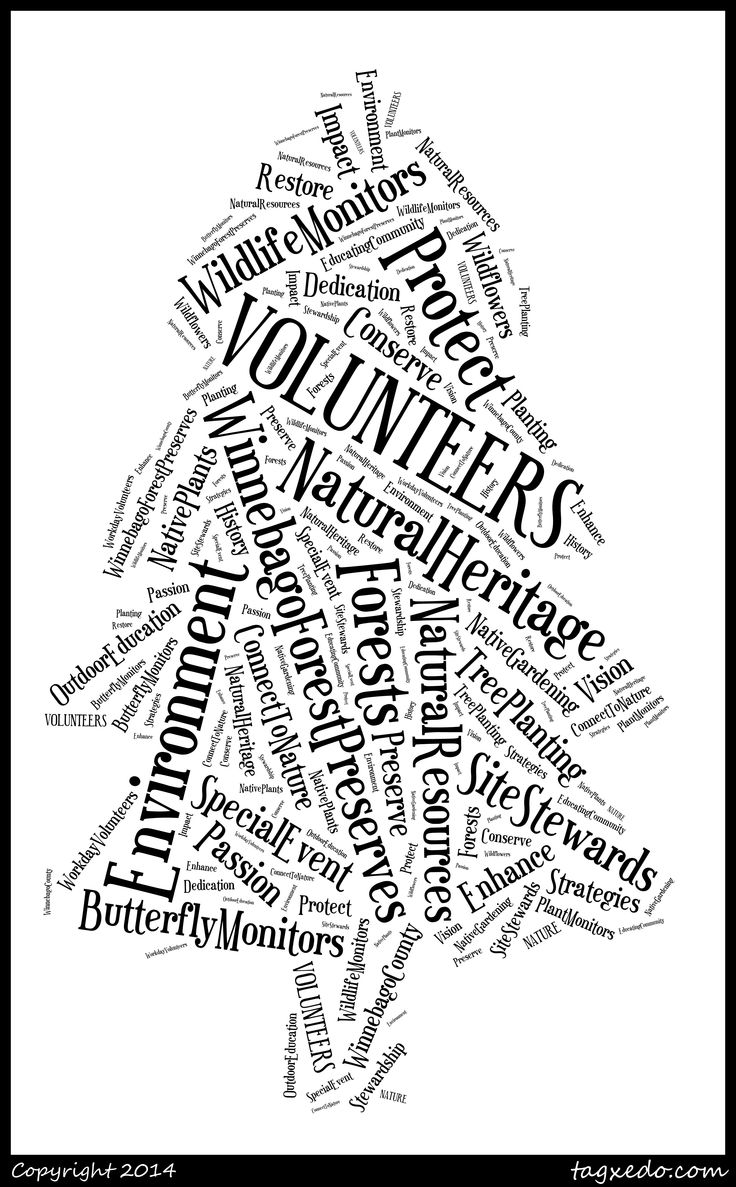 9 best FPWC Volunteers are PRICELESS! images on Pinterest