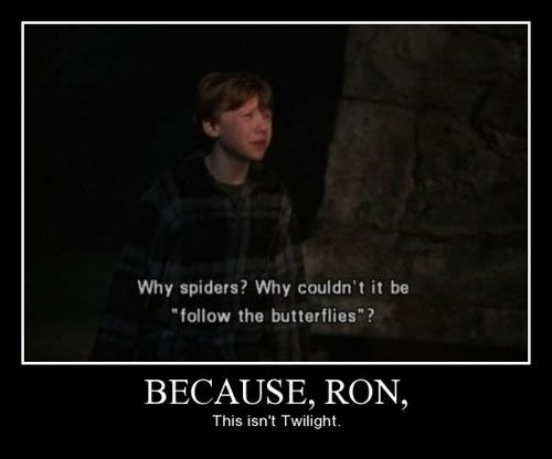 I know nothing about twilight or Harry potter...but this is funny