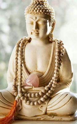 buddhabe:  Buddha