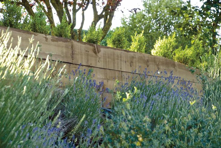 Muro de contención junto a plantas aromáticas