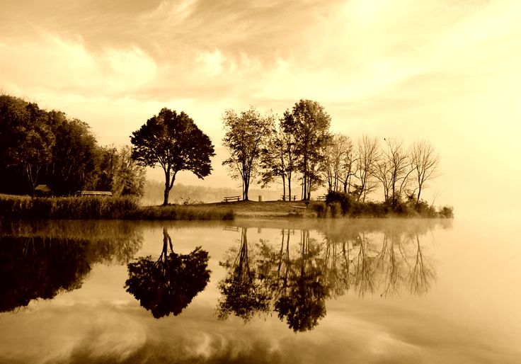 Edycja Tapety: Jesień, Jezioro, Drzewa