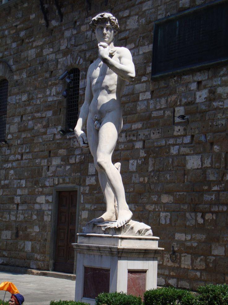Florence / Tuscany, Italy - Mediterranean Cruise - David by Michelangelo - Piazza della Signoria - Accademia di Belle Arti di Firenze