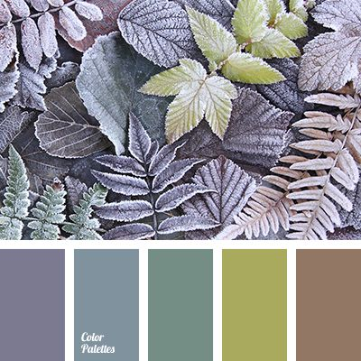 25 best ideas about green and brown on pinterest - Does brown and purple match ...
