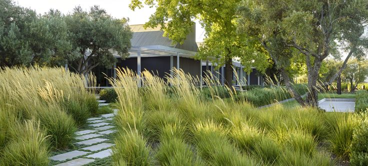 16 best world landscape architecture month images on for Short grasses for landscaping