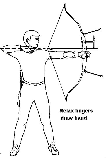 Ten Basic Steps In Archery Step 9 Release