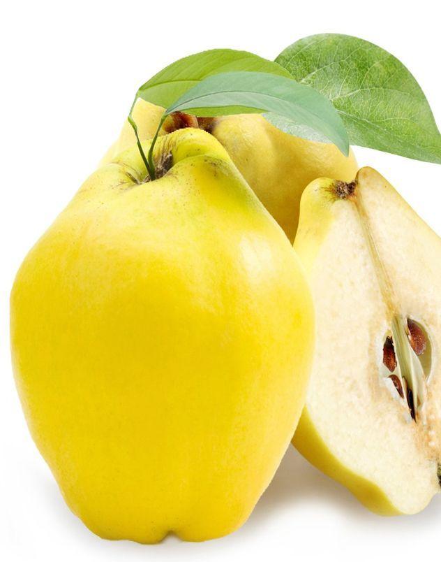 Prof. Dr.Turan Karadeniz yaptığı bir açıklamada ayvanın çok faydalı bir meyve olduğunu vurgulamıştır. Uzmanlara göre meyvesinde pektin, tanen, şeker, organik asit, A ve C vitamini ve mineral tuzlardan bol miktarda bulunduğunu, tohumlarında ise yüzde 14-18 oranında tutkal maddeler, yüzde 16-20 oranında yağ, tanen, renkli maddeler ve yüksek oranda protein, az miktarda amygdalin ve emülsin bulunan ayva bir çok rahatsızlığa iyi geliyor. Bunların başlıcaları kalp, akciğer, boğaz, mide, böbrek…
