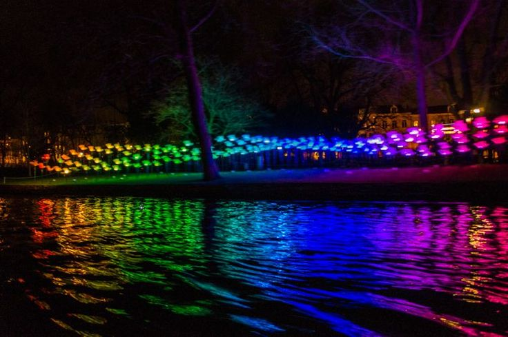 Amsterdam Light Festival: Winter in Holland with KLM