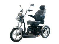 PL1303 Sport Rider, mit Rückspiegel