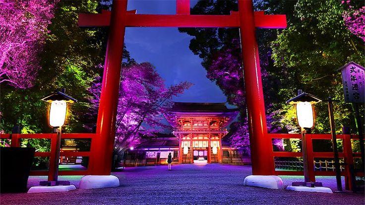 Shimogamo Shrine Light Festival - (Santuário Shimogamo de Quioto é um dos santuários mais antigos do Japão