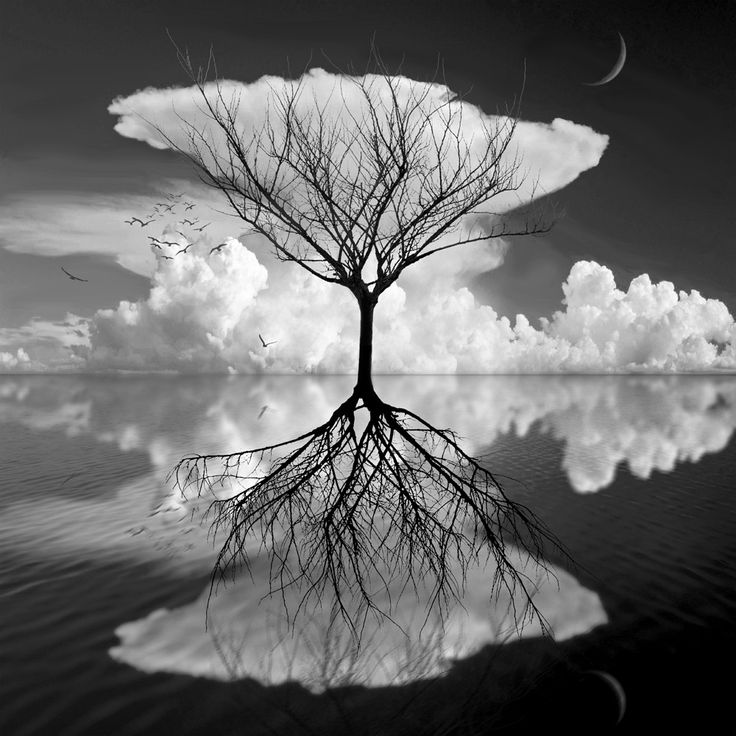 Surrealism Photograph in Black and White – Fubiz Media