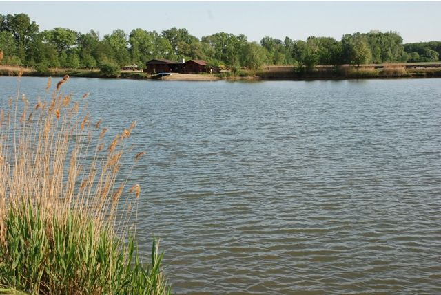 Pískovna Hare - In the village Hare possess two former gravel covering an area of 2 ha and 4.5 ha, for sports fishing. These gravel are richly stocking fish stocking ... Check more at http://carpfishinglakes.com/item/piskovna-hare/