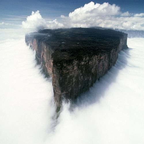 Mount Roraima - VenezuelaSouthamerica, Mountain, Mount Roraima, South America, Beautiful Places, Venezuela, National Parks, Amazing Places, Mountroraima
