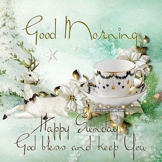 Good Morning Happy Sunday God Bless And Keep You Safe good morning sunday sunday quotes good morning quotes happy sunday sunday blessings religious sunday quotes sunday quote happy sunday quotes good morning sunday winter sunday quotes sunday blessings quotes