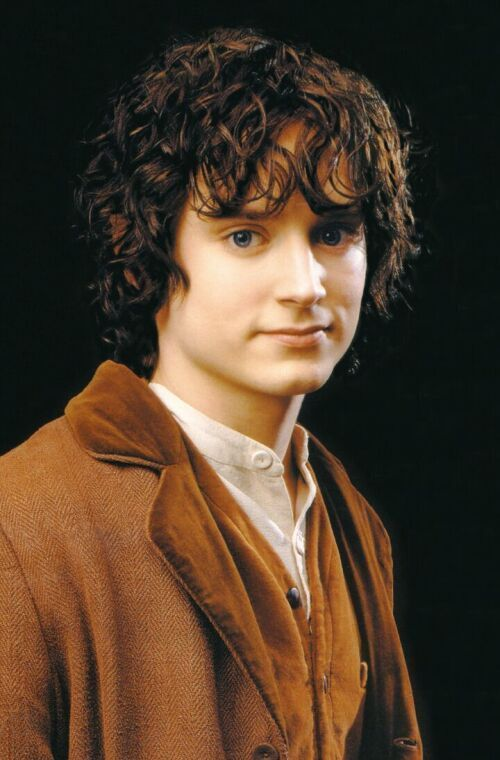And there was Frodo, pale and worn, and yet himself again; and in his eyes there was peace now, neither strain of will, nor madness, nor any fear. His burden was taken away. There was the dear master of the sweet days in the Shire.