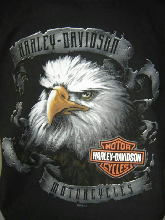 Harley Davidson MotorcyclesAnita Vasquez-Centeno