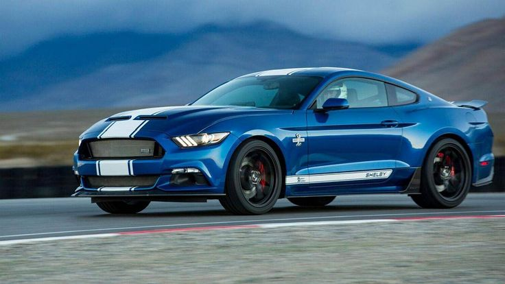 shelby-50-anos