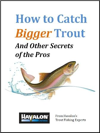 how to fish for stocked trout