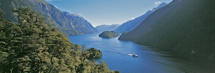 A day cruise on doubtful sound.... Yup!