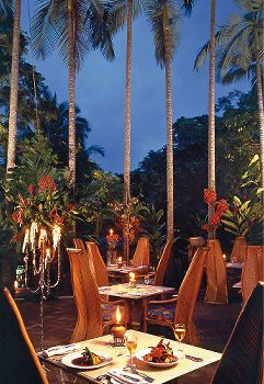 Nautilus Restaurant Port Douglas Australia! Absolutely stunning and beautiful food.
