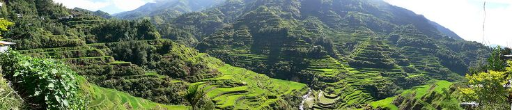 The Banaue Rice Terraces