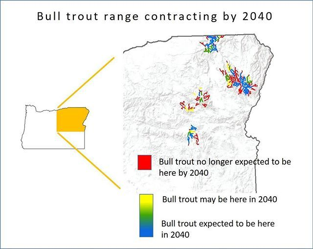A #MyODFWTakeover by Dr. Shaun Clements -  So warmer water lower summer flows and more stream drying. Predicting how Oregons fish will respond is an imprecise business but well look into some of what were expecting today. First off expect the range of many native species to contract in the next 20-40 years. As an example the graphic shows where we might expect to lose bull trout by 2040. Bull trout are a top predator that require cold clean water to spawn. As lower parts of the river heat up we will see them retreating upslope closer to cold groundwater sources.  In contrast many of the non-native species in Oregon will likely do quite well. For example in Central Oregons John Day River biologists are already seeing the range of small mouth bass expand considerably upriver during warm years.  Thanks to Dr. Jason Dunham for the data in todays pic -  #Oregon #Fish #wildlife #ClimateChange