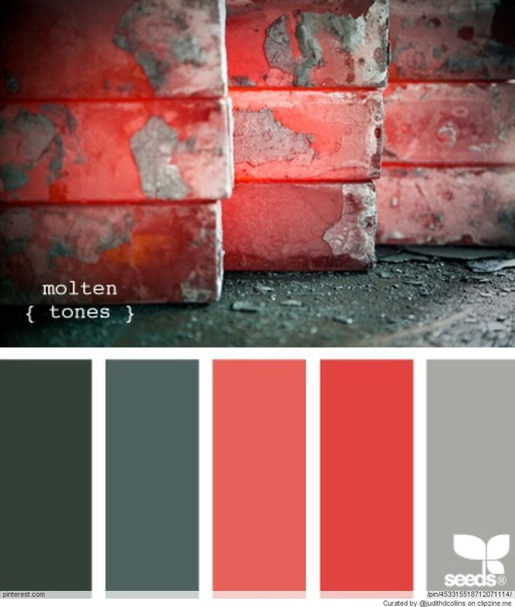 30 Grey And Coral Home Décor Ideas: Painting Ideas Images On Pinterest