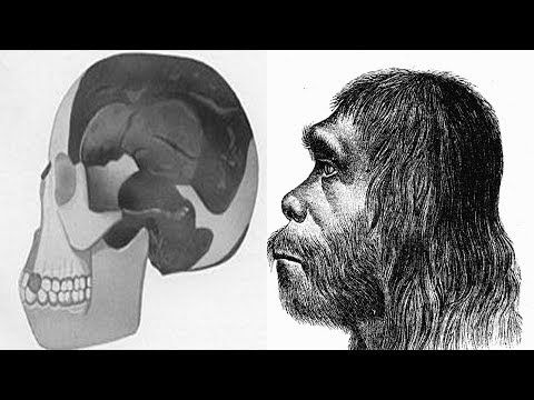 Hoaxes – The Piltdown Man