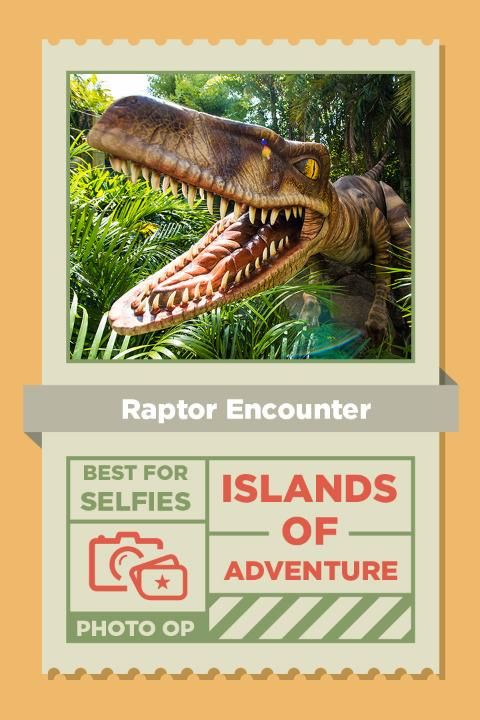 The Raptor Encounter is located between Camp Jurassic and the Jurassic Park Discovery Center.