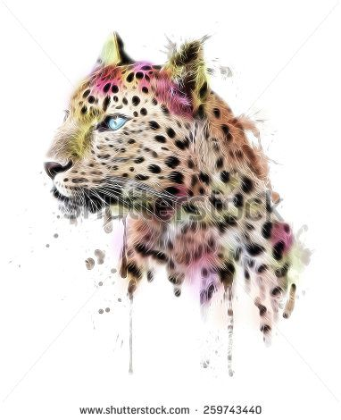 illustration leopard