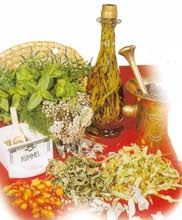 Η ΛΙΣΤΑ ΜΟΥ: Βότανα και θεραπείες ...