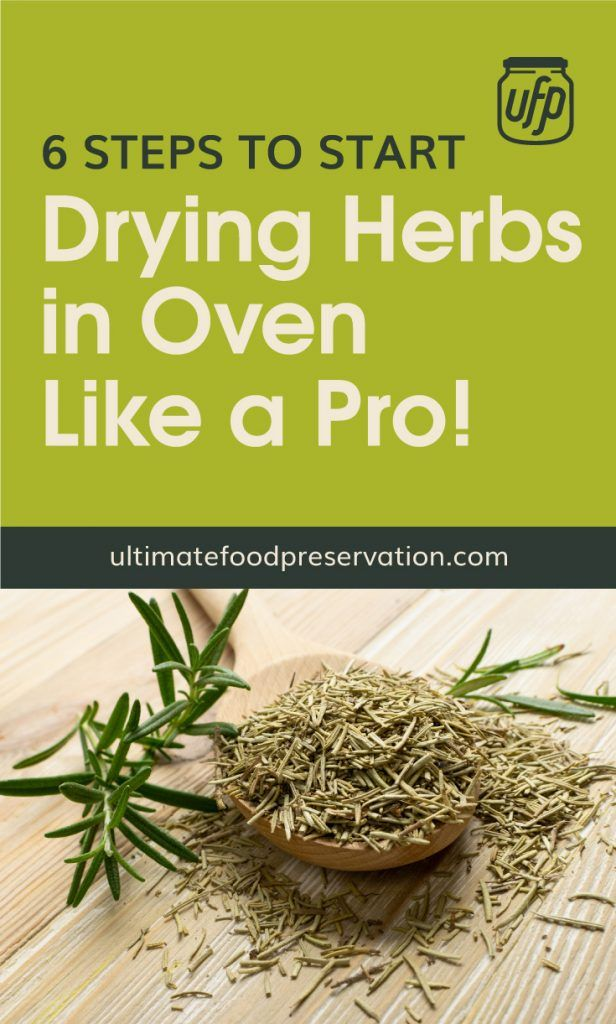 How To Dry Herbs Indoors How To Keep Cilantro Fresh For Weeks Drying Fresh Herbs How To Dry Oregano Herbs