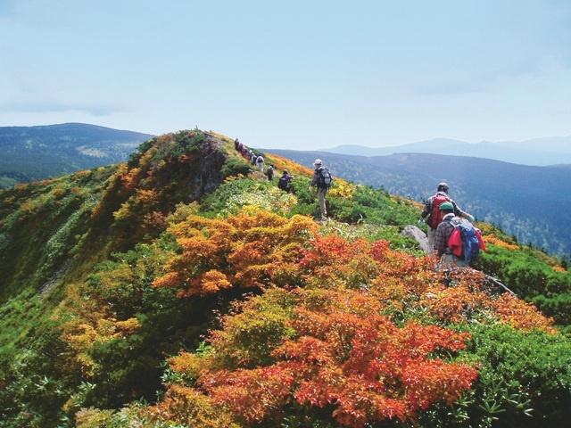紅葉の山を楽しむ