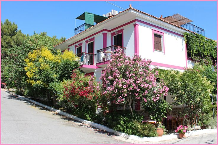 Ambiente in Ireon Samos: PENSION ERMIONI SAMOS IREON pensionen samos rooms for rent ireon rooms pensions Ireon. Einfach das andere hotel in Ireon.