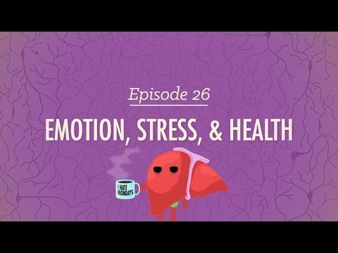 ▶ Emotion, Stress and Health: Crash Course Psychology #26 - YouTube [Yet another great resource for understanding emotions and applying them to our characters.]