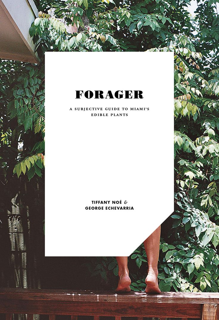 Forager | Editorial