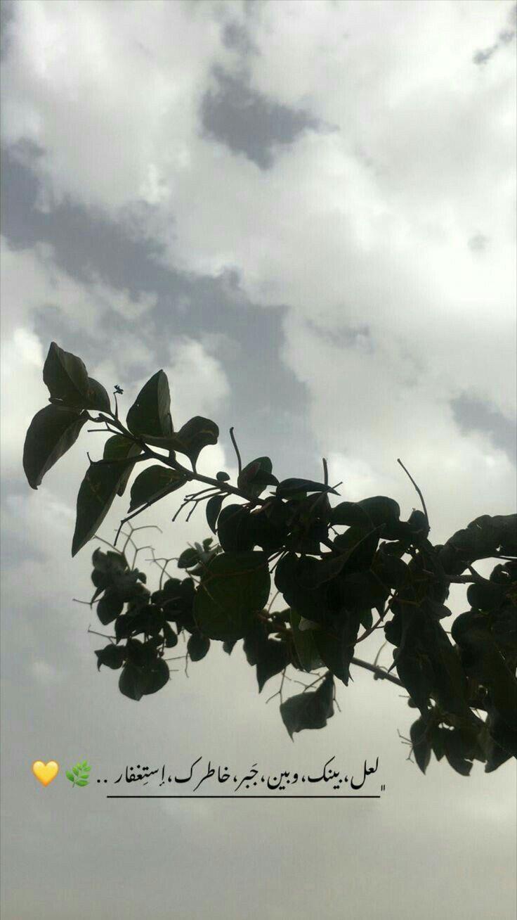 اقتباسات غيوم عبارات اكسبلور سنابيات Sky Photography Nature Cool Instagram Pictures Shadow Photography