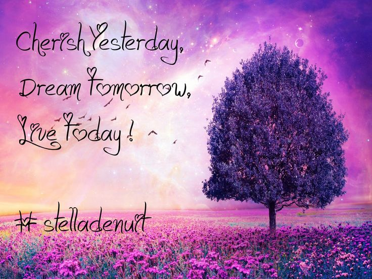 #cherish #yesterday #dream #tomorrow #live #today #laugh #love #advice #stelladenuit #facebook