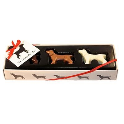 Surprise your loved one this Valentine's Day with these Chocolate Springer Spaniels from Fur Feather and Fin http://bit.ly/20ooP5a