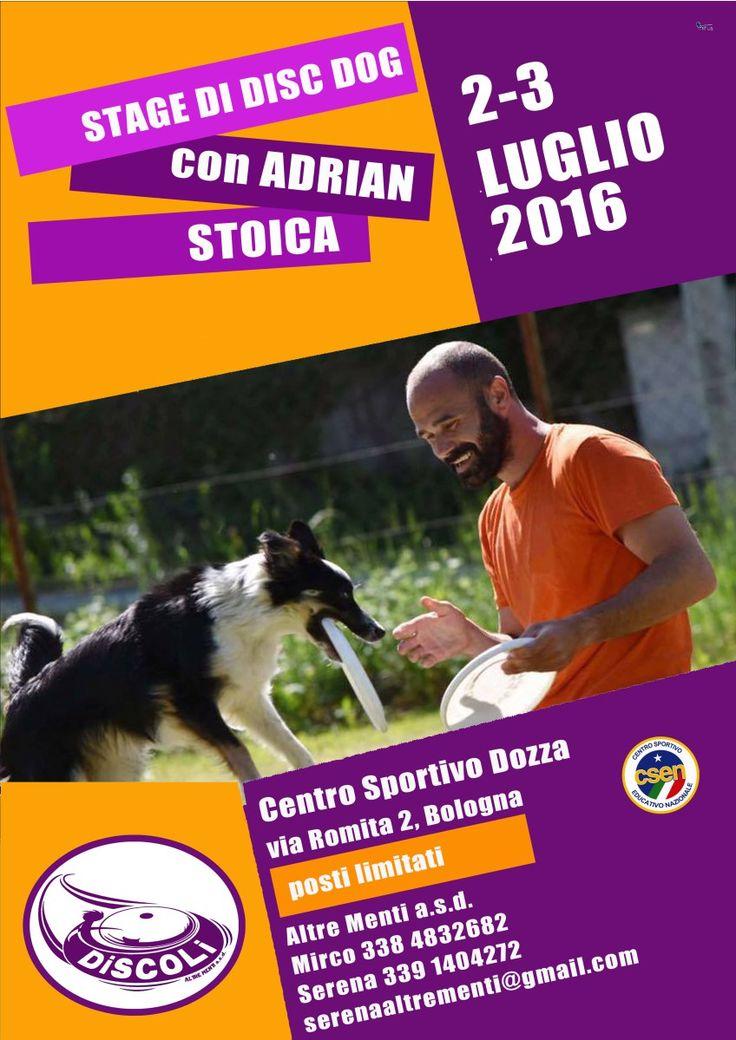 Stage di Disc Dog con Adrian Stoica