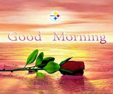 steelergalfan4life  - Morning Fam