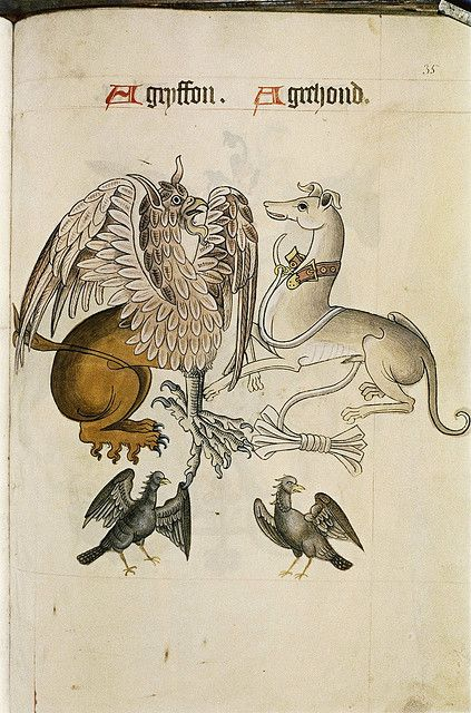 Graphics stuff - from a pattern book  Griffon and Greyhound. Bodleian Library The Pattern Book  Date: 1520-1530
