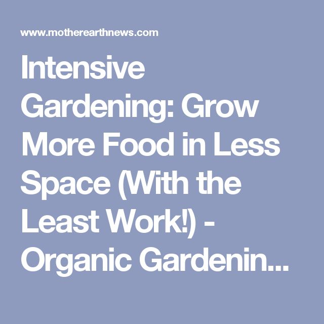 Intensive Gardening Grow More Food In Less E With The Least Work